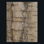 "Birch Tree Bark Letterhead<br><div class=""desc"">Birch Tree Bark</div>"