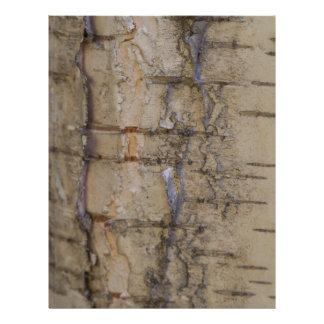 Birch Tree Bark Letterhead