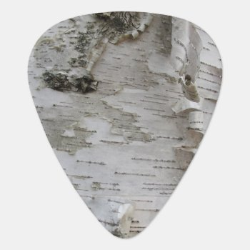 Birch Tree Bark Peeled Old Photo Art Guitar Pick by warrior_woman at Zazzle