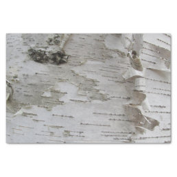 Birch Tree Bark Peeled Old Photo Art Tissue Paper