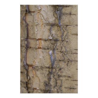 Birch Tree Bark Stationery