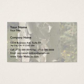 Birch tree business card