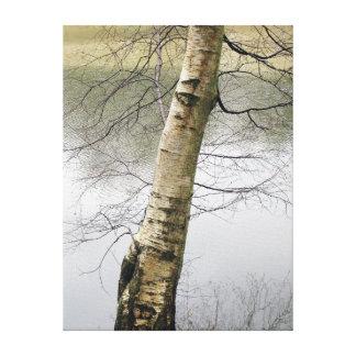Birch Tree Gallery Wrap Canvas