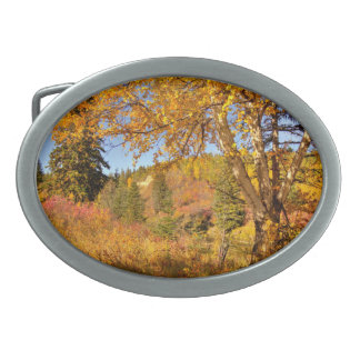 Birch Tree in Autumn Belt Buckle
