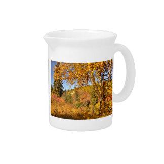 Birch Tree in Autumn Drink Pitcher