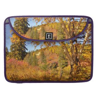 Birch Tree in Autumn MacBook Pro Sleeve