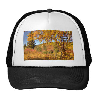 Birch Tree in Autumn Trucker Hat