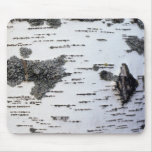 Birch tree in forest, detail, with moss mousepad