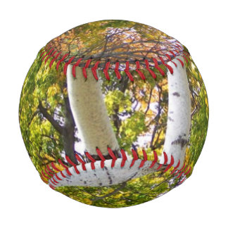 Birch Tree in the Park Baseball