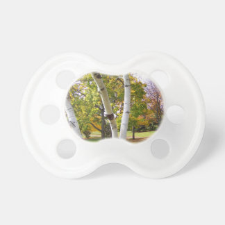 Birch Tree in the Park Baby Pacifier