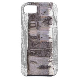 Birch Tree iPhone SE/5/5s Case