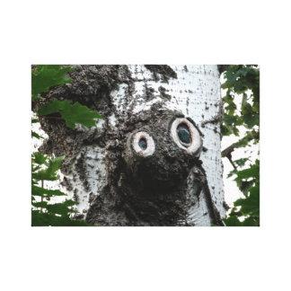 Birch  Tree Magic Face Photography Canvas Print
