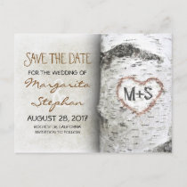 birch tree save the date postcards