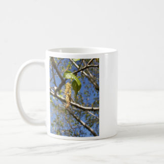 Birch Tree Seed Pods Mug