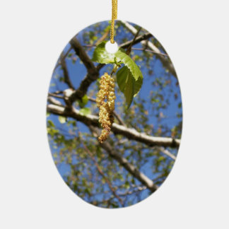 Birch Tree Seed Pods Ornament