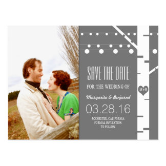 birch tree string lights photo save the date postcard