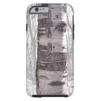 Birch Tree Tough iPhone 6 Case