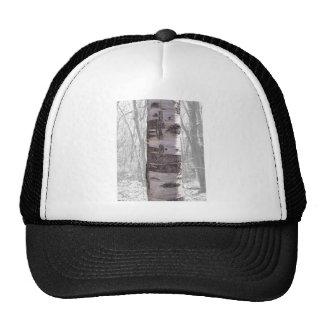 Birch Tree Trucker Hat