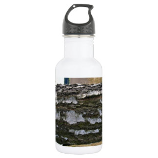 Birch Tree Trunk against the sky Stainless Steel Water Bottle