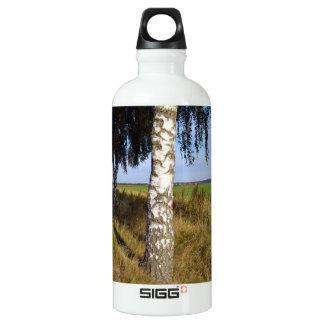 Birch Tree Trunk along roadside Aluminum Water Bottle