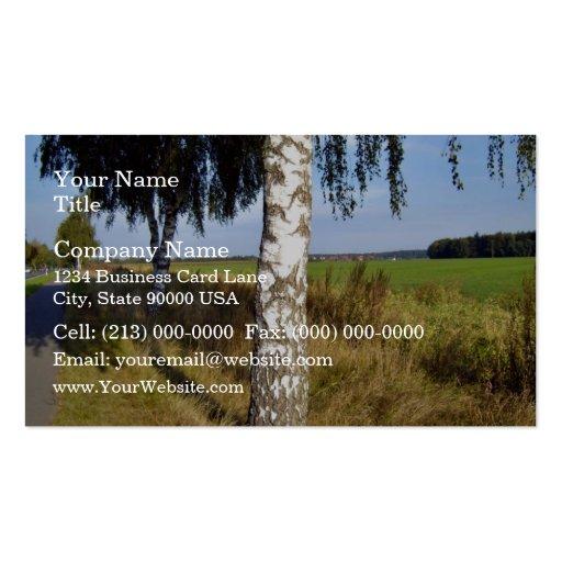 Birch Tree Trunk along roadside Business Card