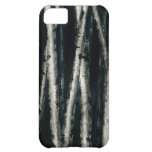 Birch Trees at Night iPhone 5 Case
