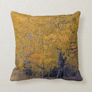 Birch Trees Autumn Leaves Pillow
