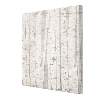 Birch Trees Stretched Canvas Prints