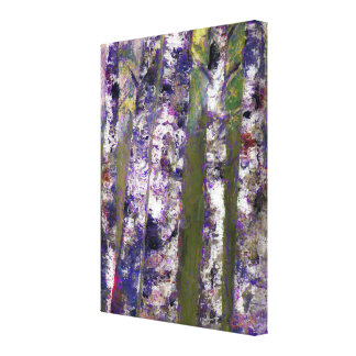 Birch Trees, Fine Art Stretched Canvas Prints