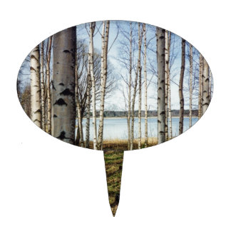 Birch trees forest in Finland Cake Toppers