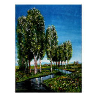 BIRCH TREES IN TUSCANY POSTER
