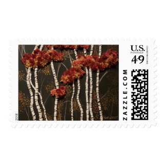 Birch Trees In Woods Postage