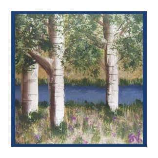 """Birch Trees on gallery wrapped 24""""x 24"""" Canvas Prints"""