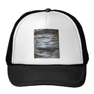 Birch trees trucker hat