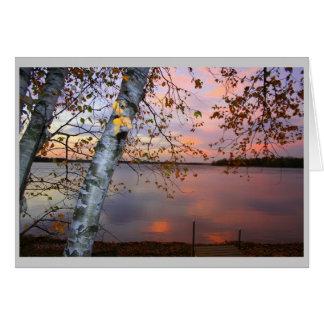 birch view greeting cards