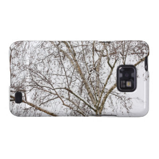 birch with snow galaxy s2 cases
