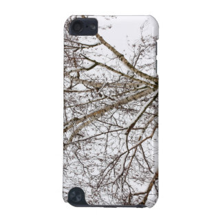birch with snow iPod touch (5th generation) cover