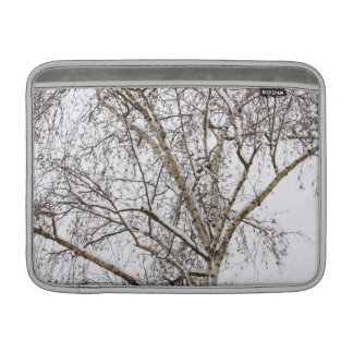 birch with snow MacBook sleeve