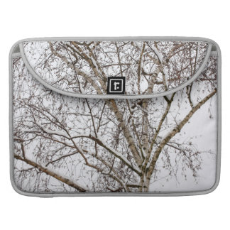 birch with snow sleeve for MacBooks