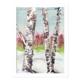 Birch Woods Postcard