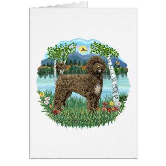 Birches - Brown Portie 2 Card