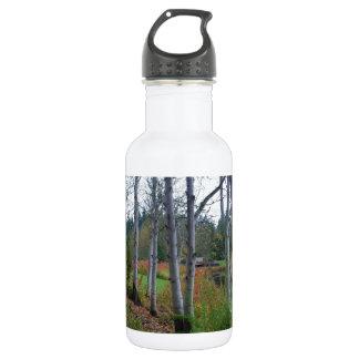 Birches Water Bottle