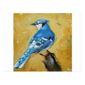 Bird#39 bluejay postcard