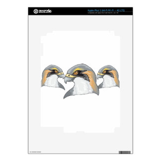 bird #4 iPad 3 decals