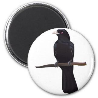 Bird --4 magnet