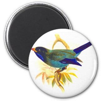 Bird-861 Imán Redondo 5 Cm