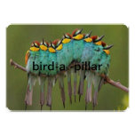 bird-a- pillar invatation custom invites