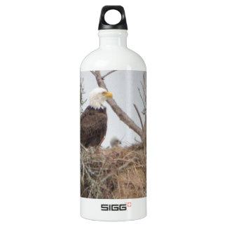 Bird American Bald Eagle Eaglet  Nest Nature Aluminum Water Bottle