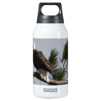 Bird American Bald Eagle Nature Thermos Water Bottle
