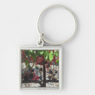 Bird among Grapes on Vine in Vineyard Keychain